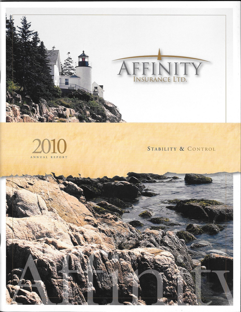 2010 Affinity Annual Report